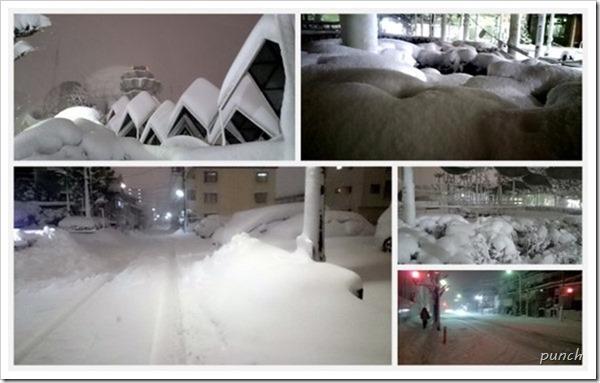 大雪湘南台