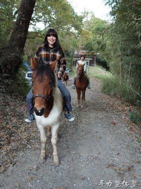 外の乗り乗馬