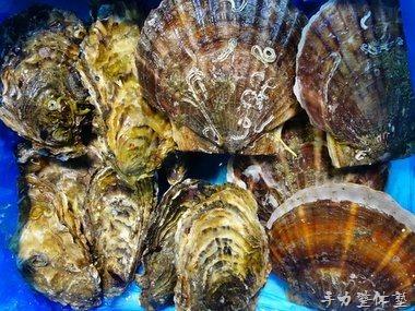 水山養殖場復興牡蠣ホタテセット