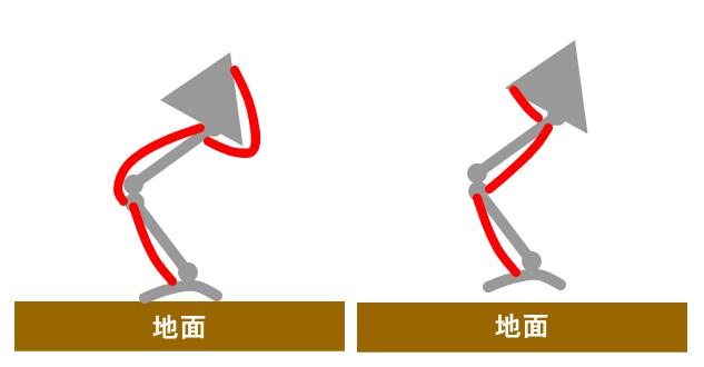 重力に対抗する筋