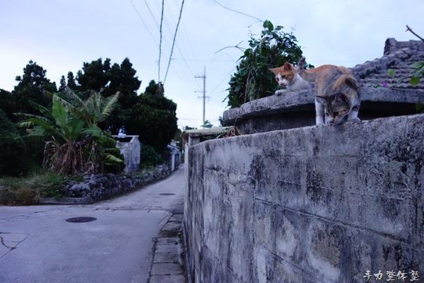 沖縄でコンデショニング