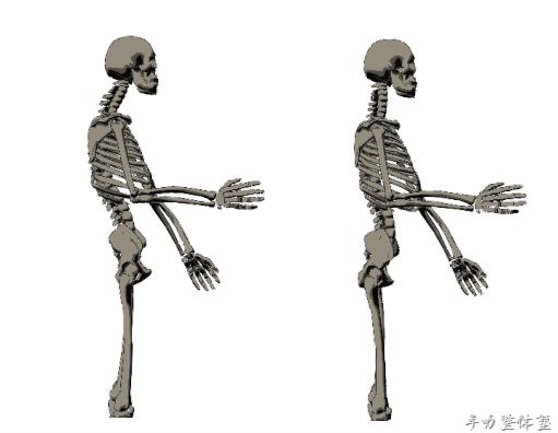 バストアップ・ヒップアップは骨格から!