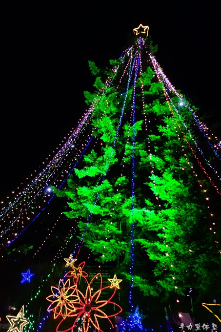 宮ヶ瀬ダムのジャンボクリスマスツリー