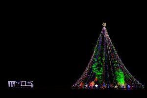 正直さが大切- クリスマスツリーのはなし