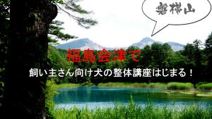 飼い主さん向け犬の整体講座、福島県会津で初開催!