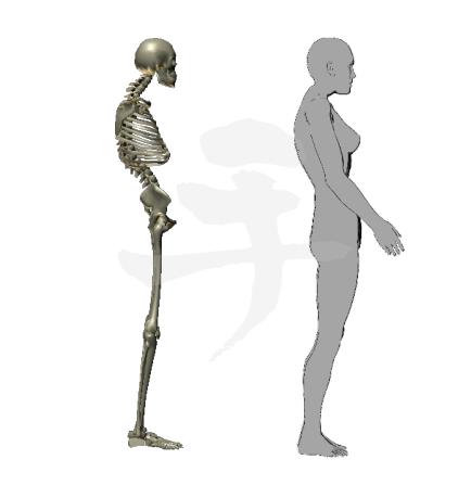 少しでも立ってたらすぐ腰が痛くなる姿勢