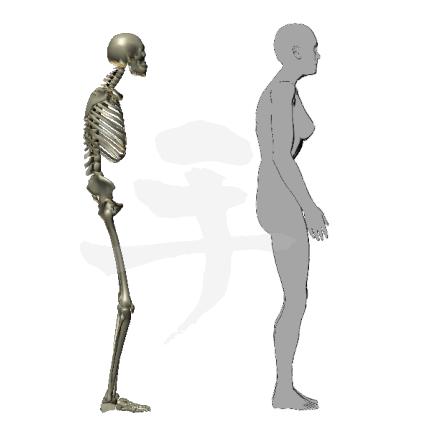 重心後ろよりで骨盤後傾が加速する姿勢