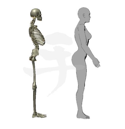 前寄りの重心が重力に引かれて腰が痛くなる姿勢
