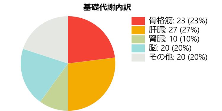 【冬の冷え対策】基礎代謝割合グラフ