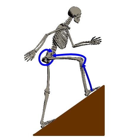 後ろ向きで坂や階段を降ると膝を痛めずに済みます