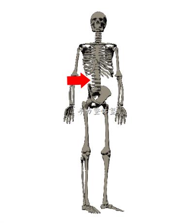 脊椎の回旋でつま先の向きを変える