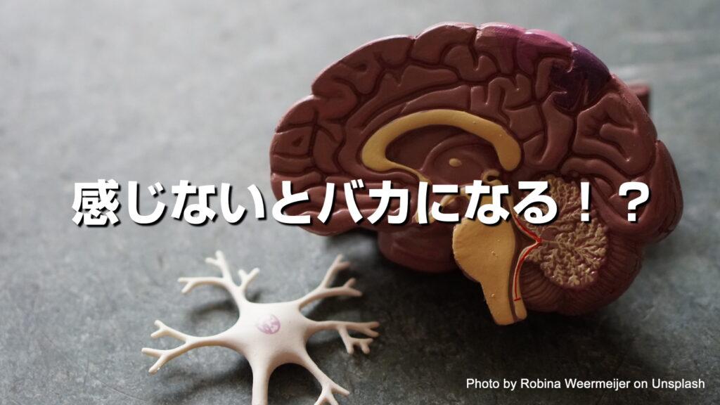 【感じないとバカになる!?】整体で身体から頭を良くする方法